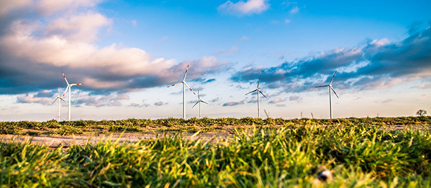 How renewable electricity can benefit your business's bottom line