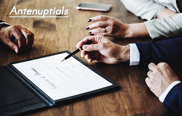 Antenuptials, Contracts, Conveyancing, Lease Agreements, Wills, testaments, lawyers, Pretoria, Gauteng