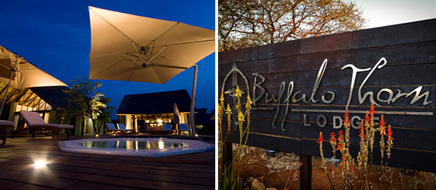 Buffalo Thorn Lodge - Pilanesberg National Park accommodation - North West