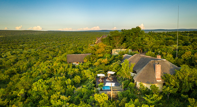 Waterberg safari lodges, Limpopo safari, walking safari, wildlife, bush safari experience, accommodation, vaalwater, treehouse, accommodation