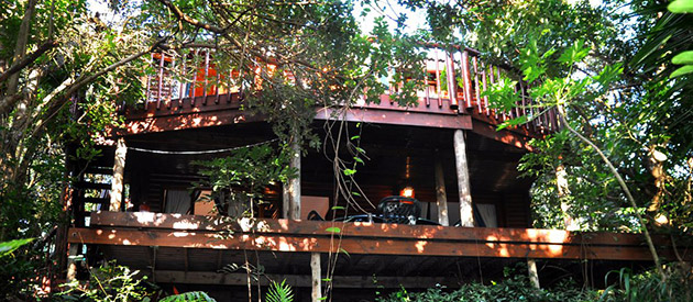 TREE TOPS COTTAGE AT PONTA