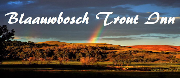 Blaauwbosch Trout Inn - Waterval Boven accommodation - Mpumalanga