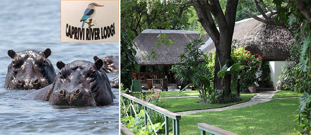 Caprivi River Lodge, Caprivi, accommodation Katima Mulilo, accommodation close to, Kavango, Kwando, Zambezi, Chobe Rivers, where to sleep, an avid birder, fisherman, nature lover, african culture, traditions, rooms available, Zambezi Regions, tourism attractions, local attractions, game parks